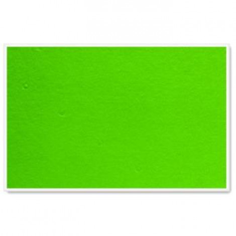 Parrot Info Boards Plastic Frame 1200*900MM (Light Green)