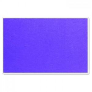 Parrot Info Boards Plastic Frame 600*450MM (Purple)