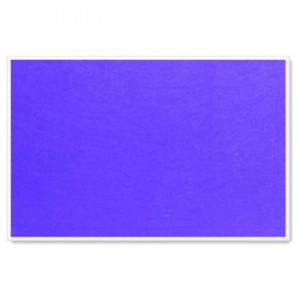 Parrot Info Boards Plastic Frame 1200*900MM (Purple)