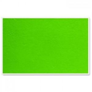 Parrot Info Boards Plastic Frame 600*450MM (Light Green)