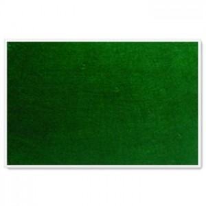 Parrot Info Boards Plastic Frame 600*450MM (Green)