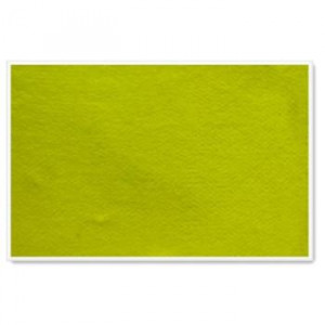Parrot Info Boards Plastic Frame 600*450MM (Yellow)