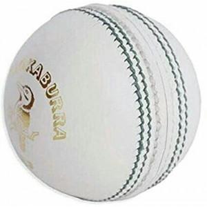 Cricket Kookabura Ball