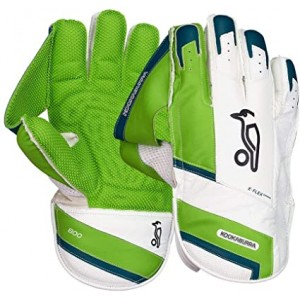 Cricket Wicket Keeper Gloves